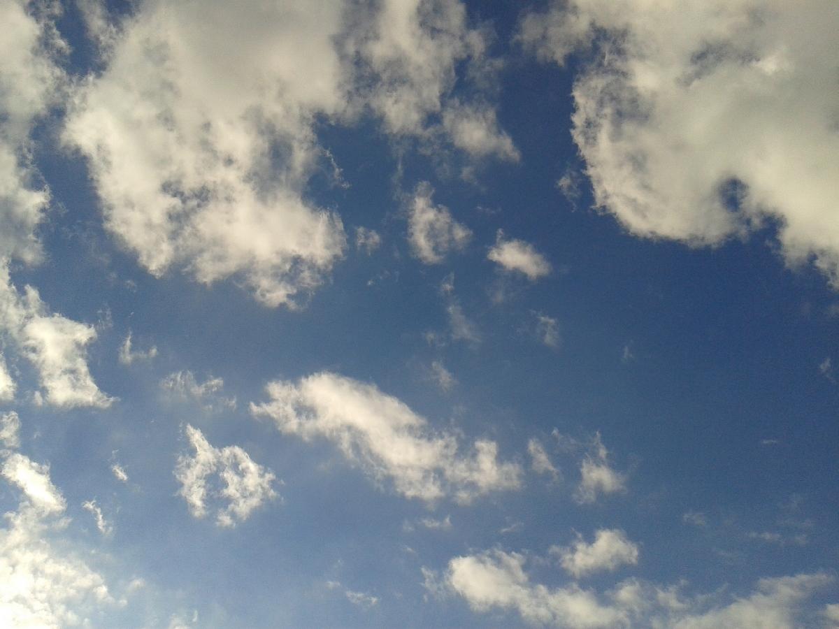 Cielo ajustado